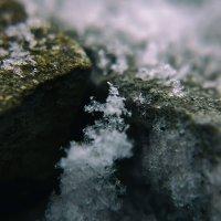 Зима наступает :: Виталий Павлов