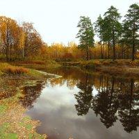 Отражение в реке :: Андрей Снегерёв