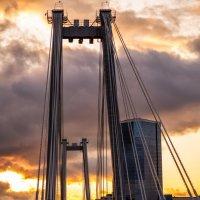 Вантовый мост :: Татьяна Афанасьева