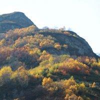 Осень в горах. :: Анастасия Сивакова