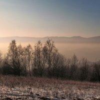 В ожидании зимы :: Людмила Зайцева