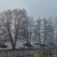 Туман :: Роман Савоцкий