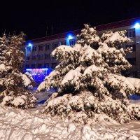 Голубые ели в белоснежных шубках! :: Елена Хайдукова  ( Elena Fly )