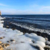На берегу залива Хага-Яман_фото1 :: Владимир Гришин