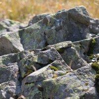 Дикие камни :: Анастасия Сивакова