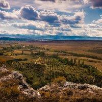На плато Белой Скалы.Крым. :: Анна Лютикова