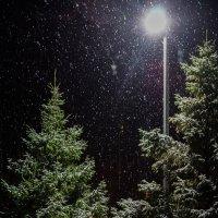 Снегопад. :: Владимир Орлов