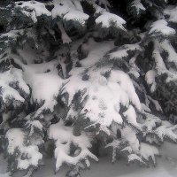 Это было зимой :: Елена Семигина