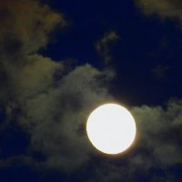 Луна. :: Пётр Беркун