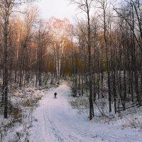По первому снегу :: Виктор Замулин