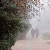 Ненастный день. Туман и сырость... :: Татьяна Смоляниченко