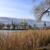 Иосифо-Волоцкий монастырь :: галина северинова