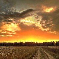 Улыбка осеннего заката :: Лара Симонова