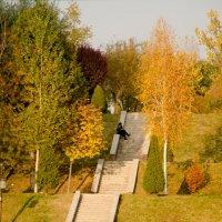 Ташкент :: Мария Ларионова