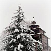 Зима в одной деревне :: Екатерина Забелина