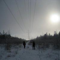 Туман на сопке :: Anna Ivanova