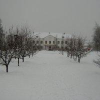 Школьный парк :: Дмитрий Арсеньев