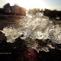 Первый лед :: Дмитрий Ерохин