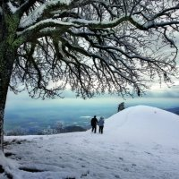 зима в Юрских горах :: Elena Wymann