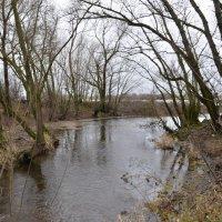Ручей впадающий в реку раин 2 :: АЛЕКС Alex