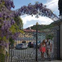 Ворота в РАЙ :: Наталья (D.Nat@lia)