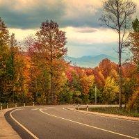 Осенняя дорога Мезмай-Нижегородская :: Геннадий Клевцов