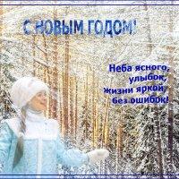 Пожелание от Снегурочки :: Елена Чудиновских