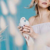 голубка :: Валерия Стригунова