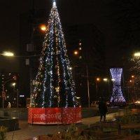 Новогодняя... :: Валерий