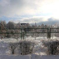 Такая погода 19 декабря, но не сегодня :: Надежд@ Шавенкова