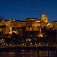 Будапешт. Будайский дворец :: Анна Углова (Рыбакова)