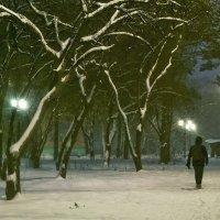 В парке... :: Людмила Фил