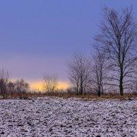 лёгкая зима (пока) :: Георгий А