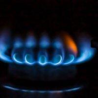 Газ :: Inga Catlaka