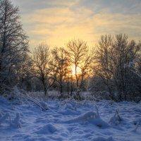 Утро...падал снег :: Cергей Кочнев