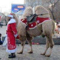 К нам приехал Дед Мороз! :: Нина Бутко