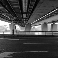 Крылатский мост :: Александр