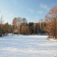 Зима в Серебряном бору... :: Наташа *****