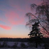 Вечерняя красота :: sm-lydmila Смородинская