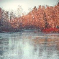 Октябрь, первый лёд. :: Андрей
