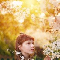 Золото дня :: Никита Cочейкин