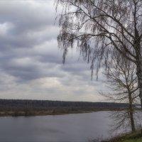 Волга близ Твери :: Дмитрий Анцыферов