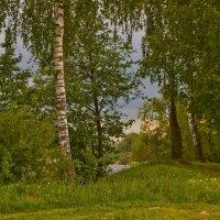 Майские красоты :: Ольга Винницкая (Olenka)