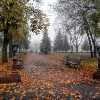 Осенние зарисовки :: Роман Савоцкий