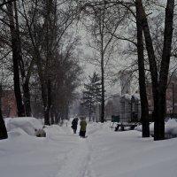 Много снега... :: Владимир Михайлович Дадочкин
