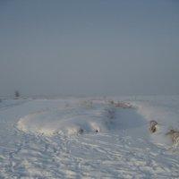 Туман :: Anna Ivanova
