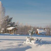 Скоро Новый год.... :: Viacheslav Birukov