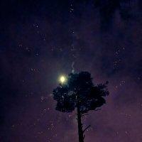Свет в ночи :: Александр Зиновьев