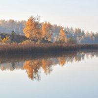 Поздняя осень. :: Евгений Кузнецов