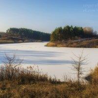 На грани между осенью и зимой :: Сергей Шаталов